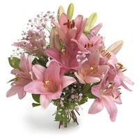 Ljuvliga liljor