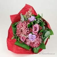 Underbara rosor i rosalila toner