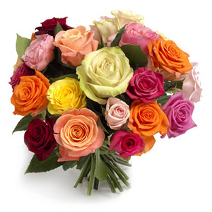 Magiska mixade rosor