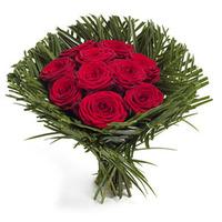 Passionerade rosor