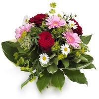 Blomstrande favorit