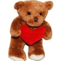 Nallebjörn med hjärta i famnen
