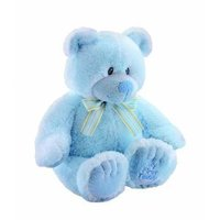 His First Teddy Bear