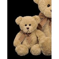 Baby Bensen bear