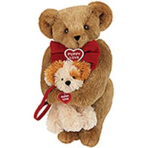 Teddy Bear Love Puppy