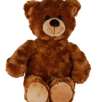 Lurvig brun Björn