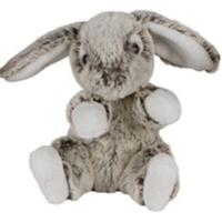 Kaninen Hoppe
