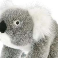 Koala 15 cm
