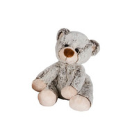 En liten grå Björn