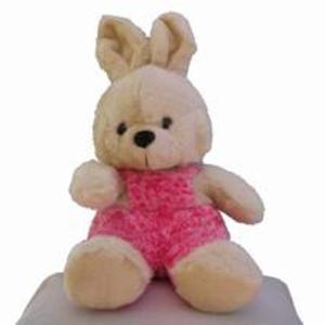 Kanin i rosa overall