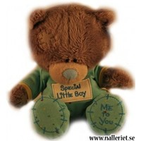 "Nalle ""Special litle boy"""