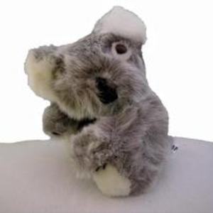 Liten koala