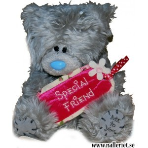 Nalle Special Friend
