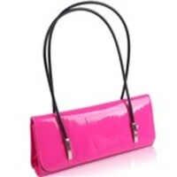 Chic Noble Evening Handbag