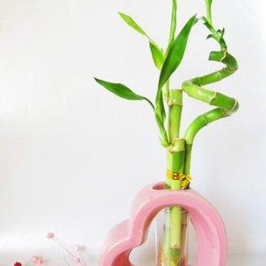 Ceramic Heart Vase