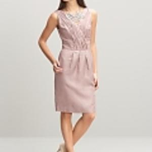 Business Woman Dress