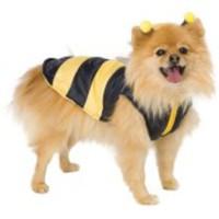 Enkel men söt bi-dräkt för hunden