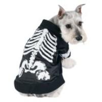 Häftig skelett-dräkt för hunden