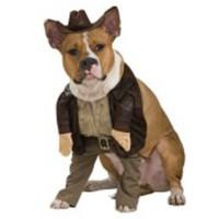 Tuff, officiell Indiana Jones-dräkt för hunden