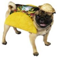 Lustig taco-dräkt för hunden