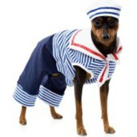 Dundesöt sailor-dräkt för hunden