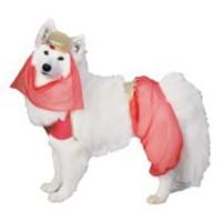 Harem-dräkt för hunden