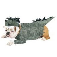 Dinousauriedräkt för hunden