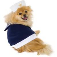 Sockersöt sailor-dräkt för hunden