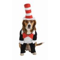 Katten i Hatten-dräkt för hunden