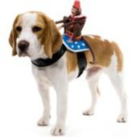 En apa på ryggen-dräkt för hunden