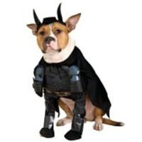Tuff Batman-dräkt för hunden