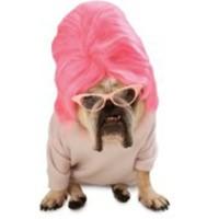 Topp-till-tå-rosa-dräkt för hundar