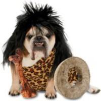 Grottmans-dräkt för hundar