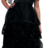 Den enkla, snygga svarta änkan