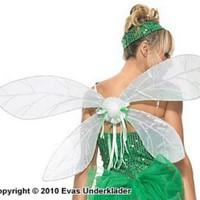 Spektakulära trollsländevingar