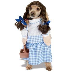 Dorothy från Trollkarlen från Oz (hundkostym)